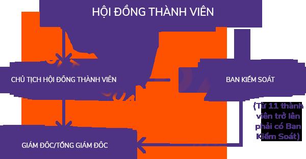 Sơ đồ cơ cấu tổ chức quản lý của công ty TNHH 2 thành viên trở lên